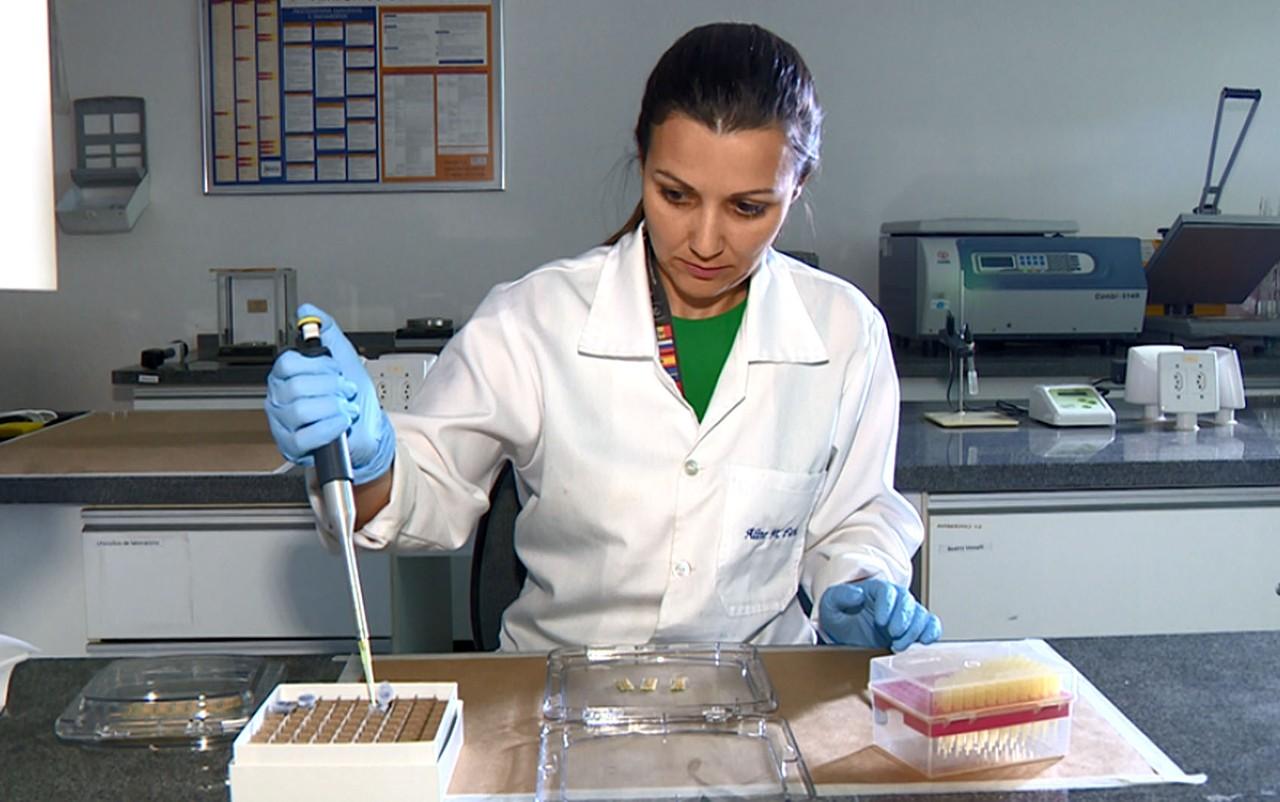 Cientistas criam sensor que diagnostica zika com gota de urina e resultado na hora em Campinas (SP)