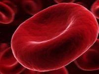 Cientistas conseguem transformar sangue tipo A em doador universal