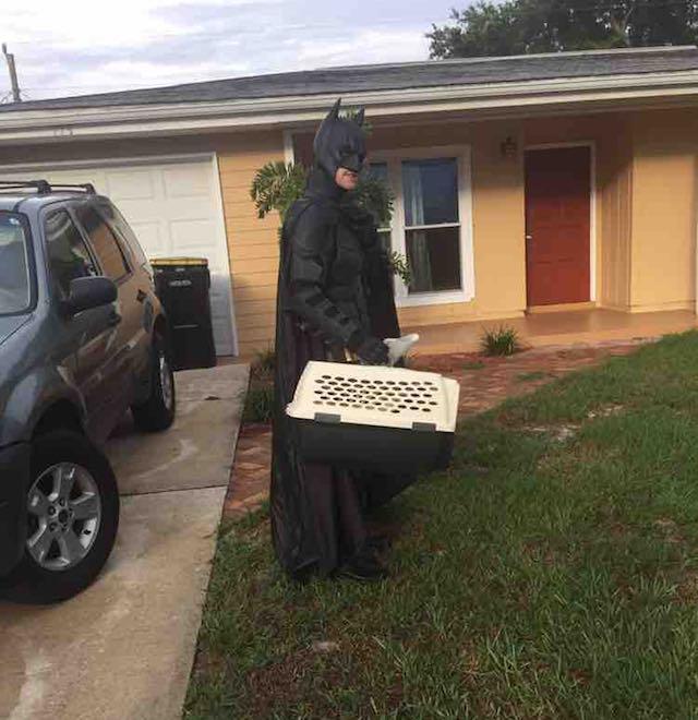 homem vestido batman salva cães eutanásia