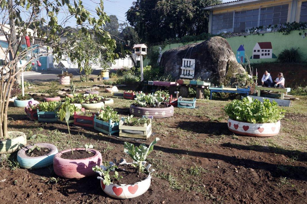 Terrenos baldios viram jardins e hortas em bairro de Curitiba (PR)