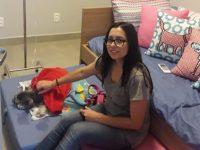 clínica permite acompanhante animais internados