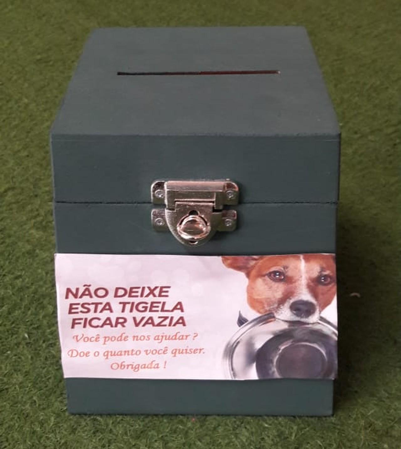 Empresária cria 'cãodomínio' para abrigar cães de rua em Buri (SP)