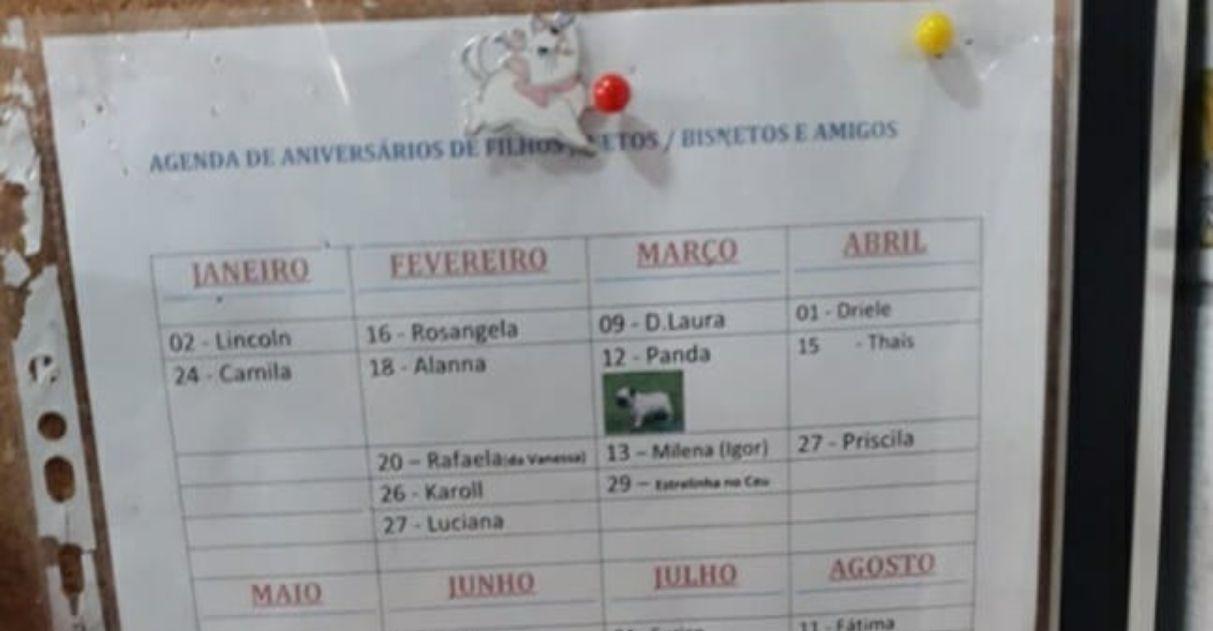 Vovó cria calendário de aniversários da família - incluindo seus cães e gatos