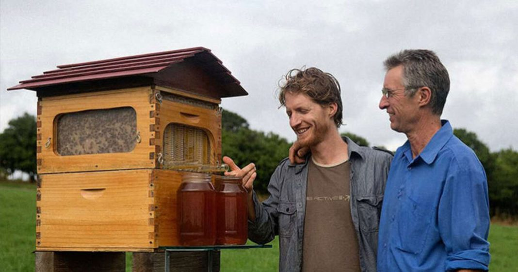 Pai e filho criam 51 mil colônias de colmeias para salvar as abelhas da extinção 2