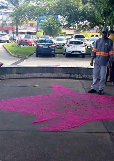 funcionario hospital faz desenhos flores chao impressiona pacientes