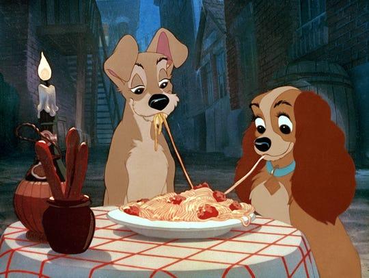 cachorro cadela comendo macarrão a dama e o vagabundo