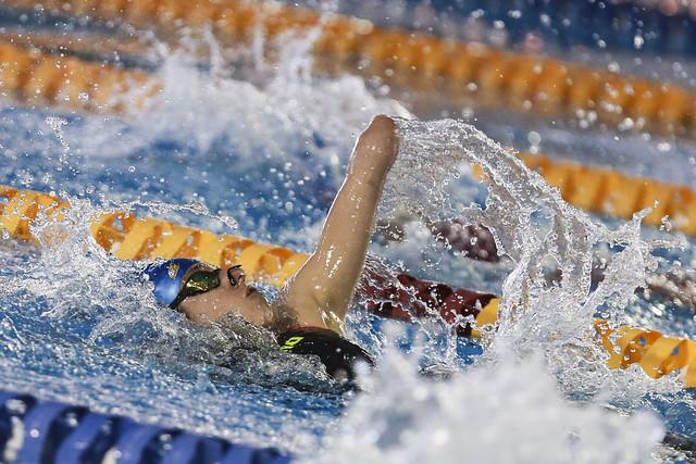 nadadora braço fora piscina