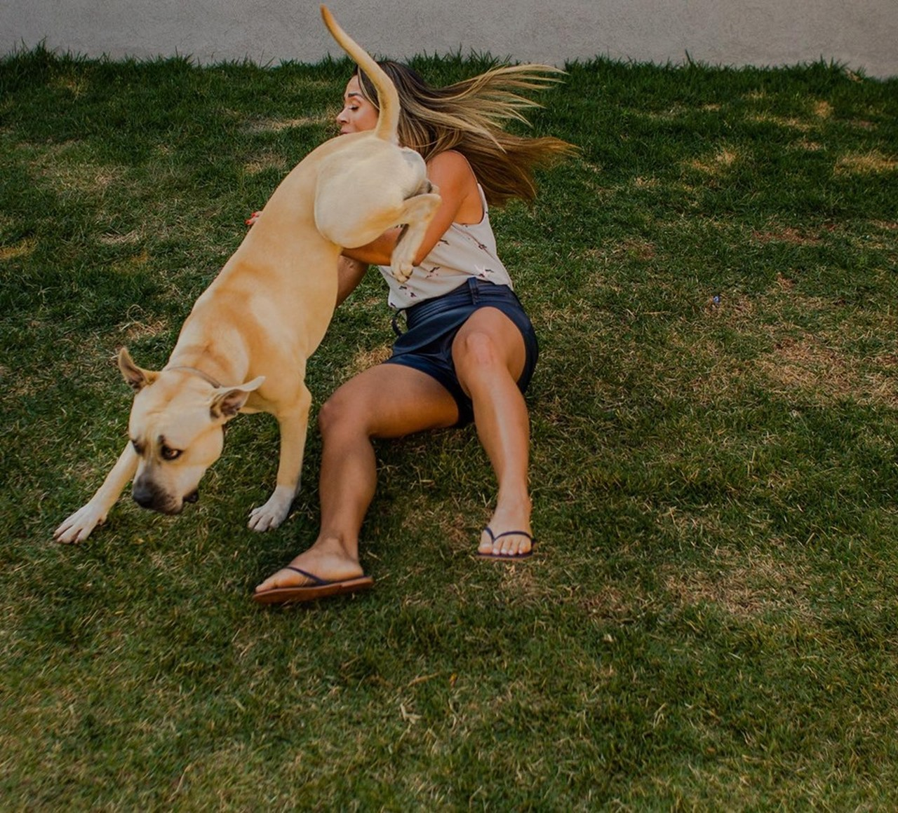 Cachorro rouba cena ensaio noivado conquista internet