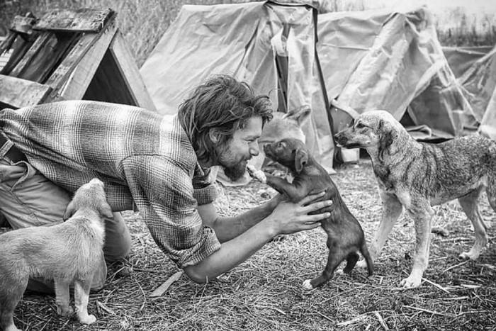 homem fazendo carinho cachorro