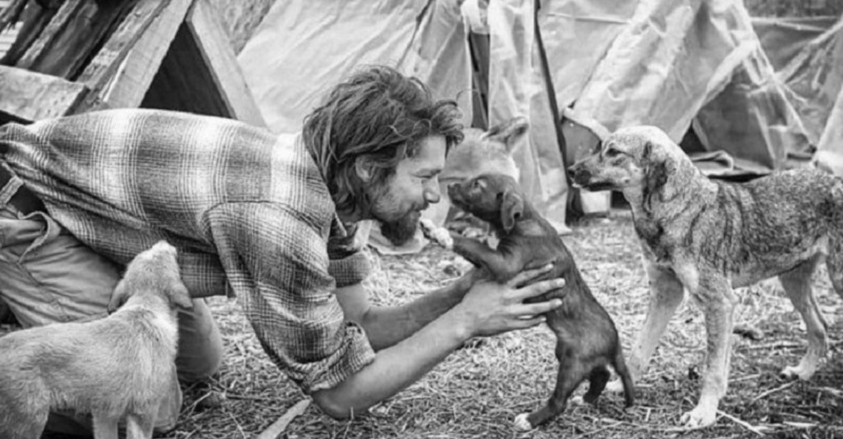 Modelo abandona carreira promissora para resgatar e cuidar de cães abandonados 2