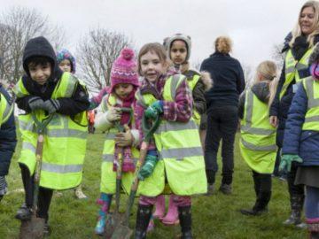 bélgica irá plantar uma árvore para cada criança recém-nascida