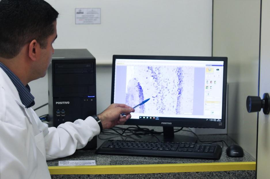 pesquisador apresenta estudo folha pitangueira