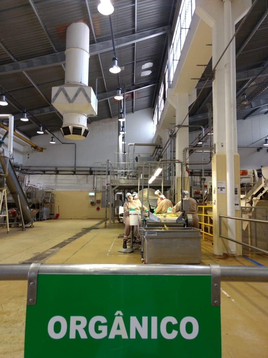 fábrica de produção das papinhas orgânicas nestlé