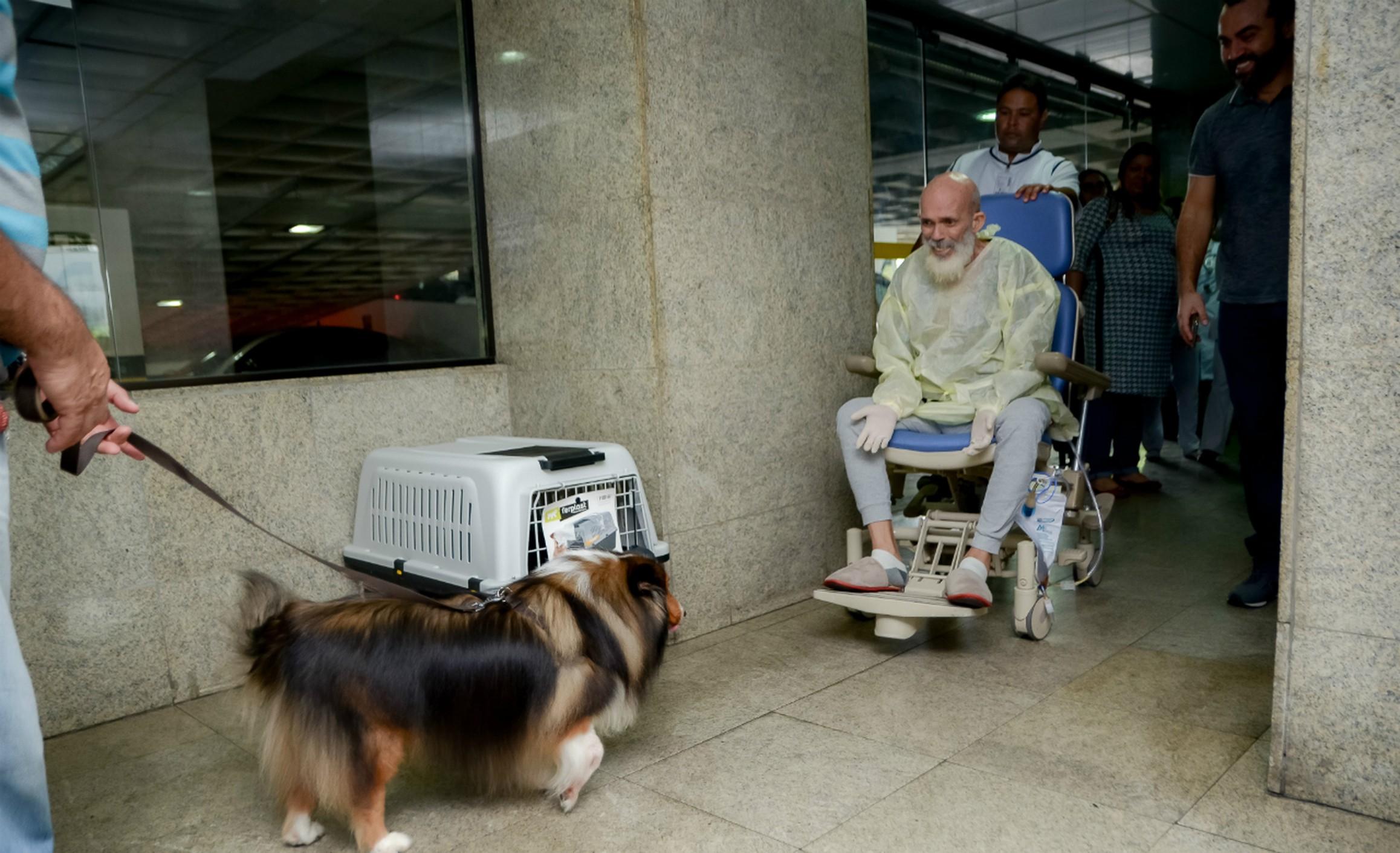 Paciente câncer melhora visita cãozinho surpreende médicos