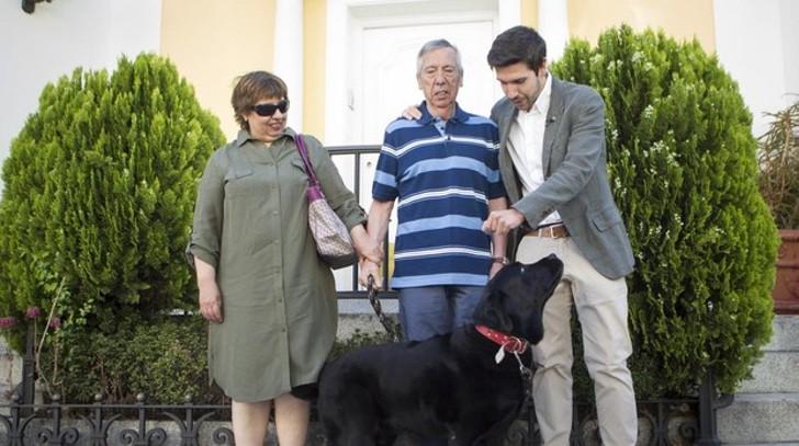 Cachorro aprende a levar dono com Alzheimer para casa todos os dias