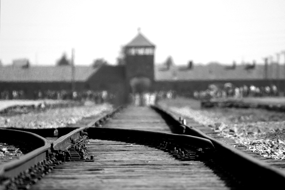 Primos separados holocausto reencontro
