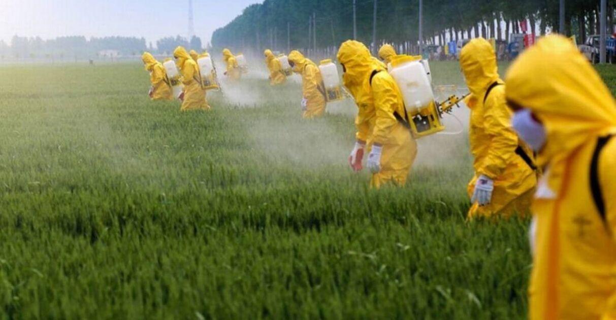 Câmara Florianópolis aprova lei proíbe uso agrotóxicos