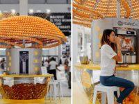Máquina revolucionária faz suco e 'imprime' copos 3D feitos com cascas de laranja 4