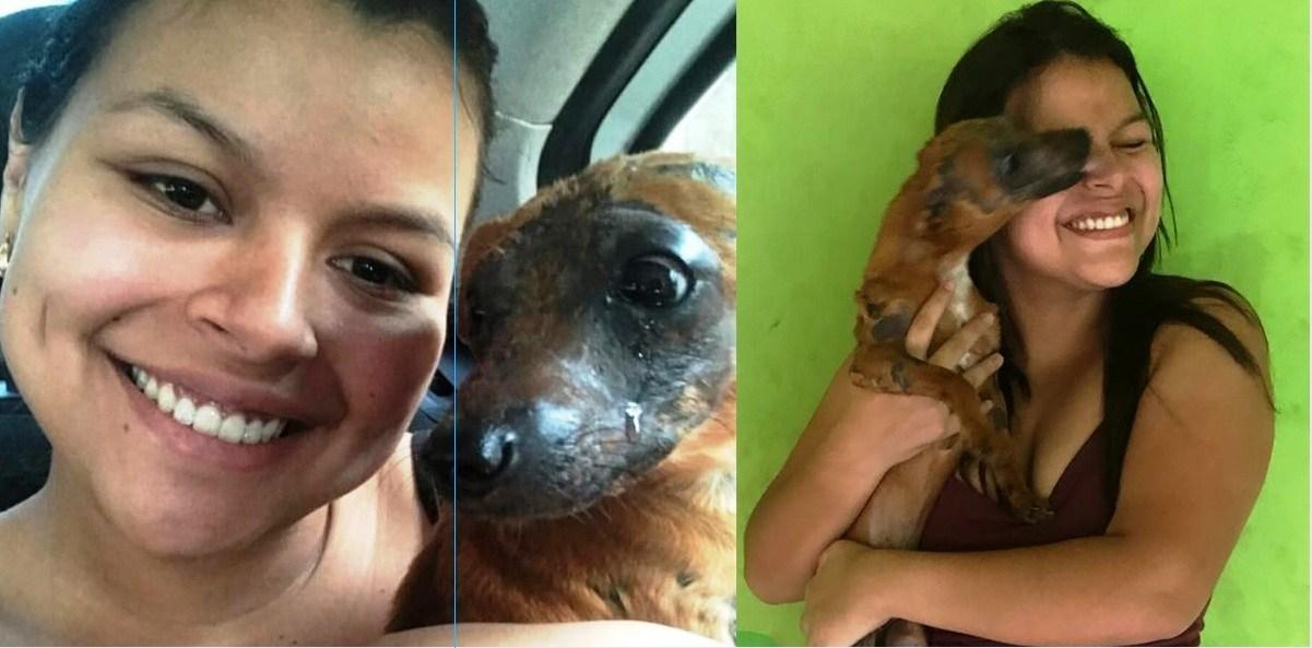 Cãozinho queimado vivo chora adotado