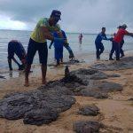 ajuda óleo praias do nordeste