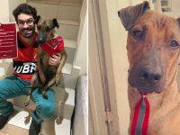 Flamenguista que rifou ingresso para salvar cachorro ganha nova chance de assistir ao jogo 5