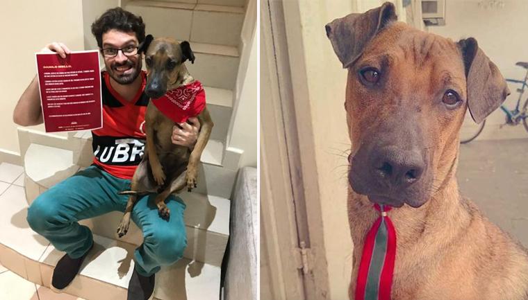Flamenguista que rifou ingresso para salvar cachorro ganha nova chance de assistir ao jogo 1