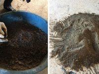 UFBA transforma óleo recolhido nas praias do Nordeste em carvão 9