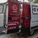 Ambulância para resgatar cães e gatos em risco nas ruas começa a operar em Curitiba 2