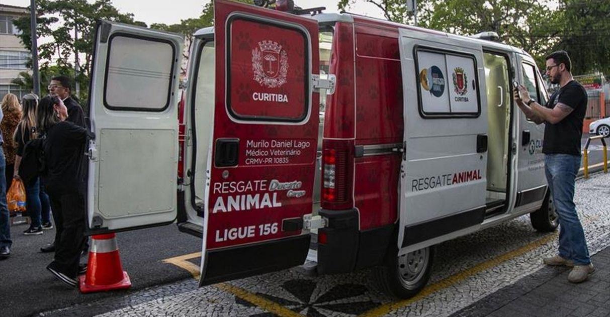Ambulância para resgatar cães e gatos em risco nas ruas começa a operar em Curitiba 1