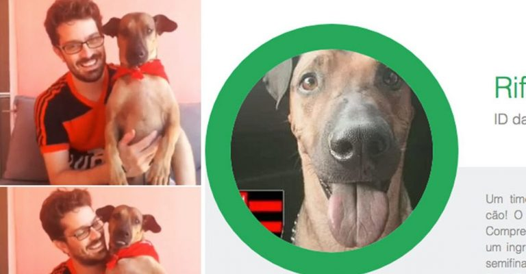 Vaquinha cãozinho Doze com câncer bate meta