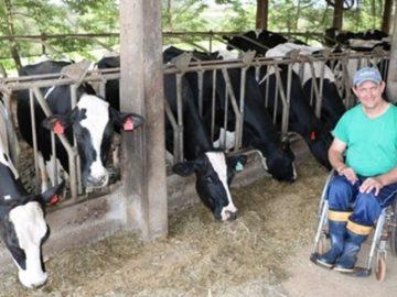 Agricultor cadeirante quadruplica produção leiteira: 'Para que me tratar de forma diferente?' 6