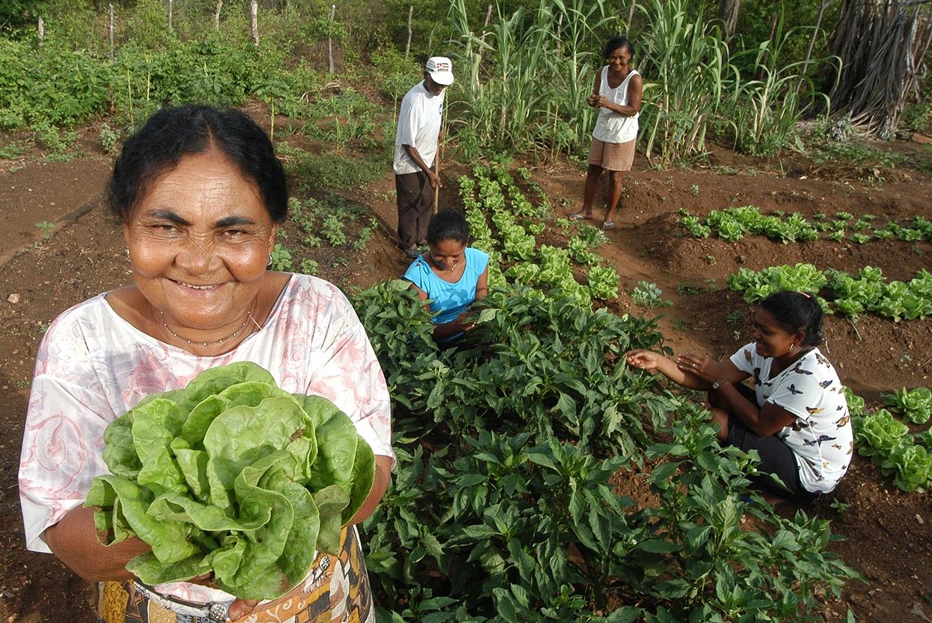 mulheres quilombolas produção agrícola sustentável