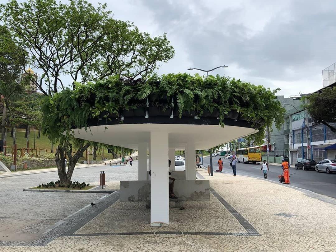 Ponto de ônibus ganha jardim suspenso em Salvador: 125m² de teto verde! 2