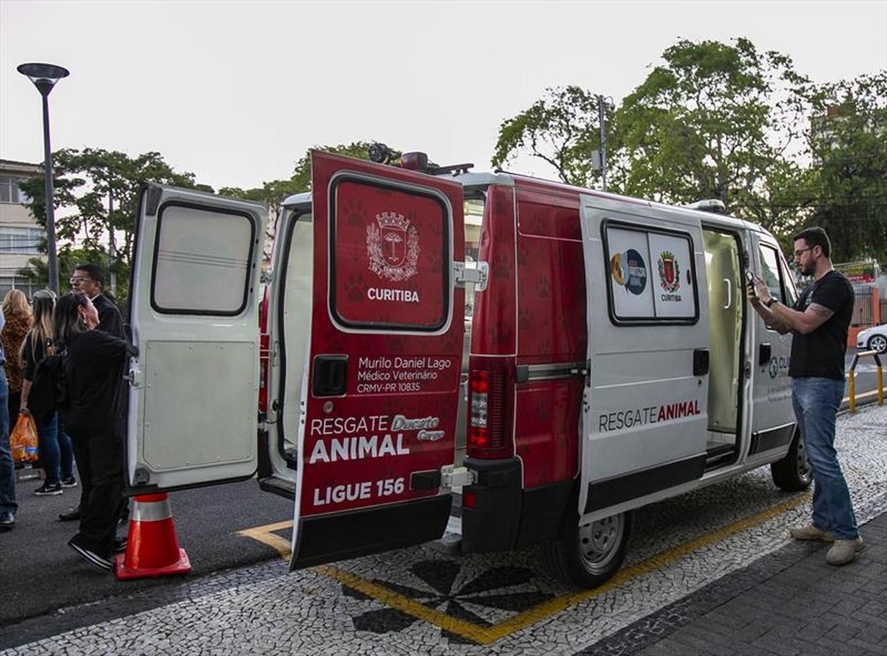 Ambulância resgate cães gatos de rua Curitiba
