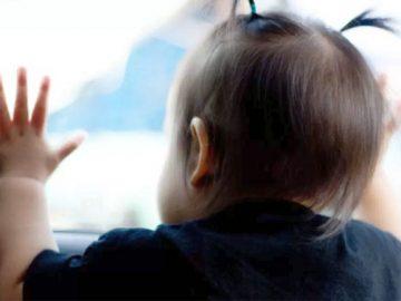 Sensorpode evitar morte de bebês e pets esquecidos dentro de veículos 1