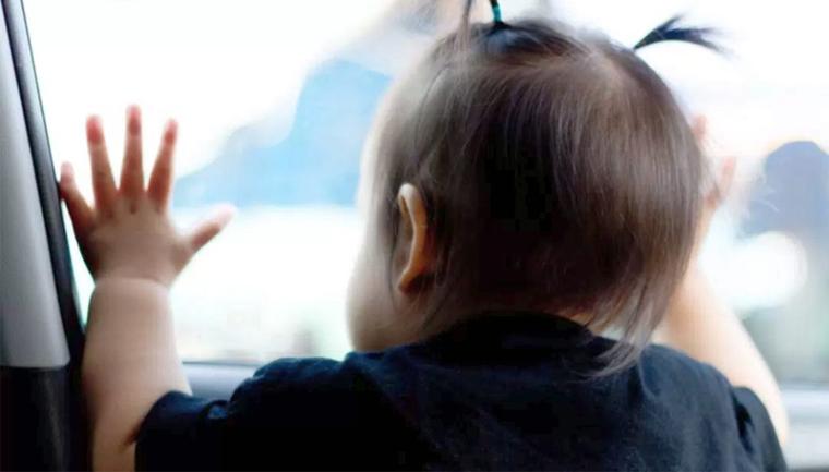 Sensorpode evitar morte de bebês e pets esquecidos dentro de veículos 4