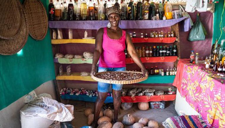 Em Goiás, mulheres quilombolas transformam plantas do Cerrado em remédios e cosméticos 4