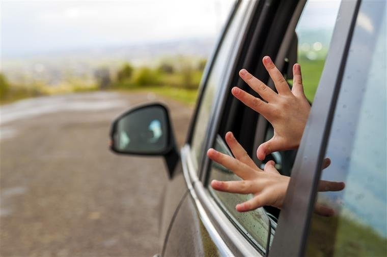 Cientistas criam sensor detecta crianças animais esquecidos carros
