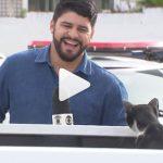 Indiano poupou dinheiro por 10 anos para comprar 'ambulância' e ajudar animais abandonados 2