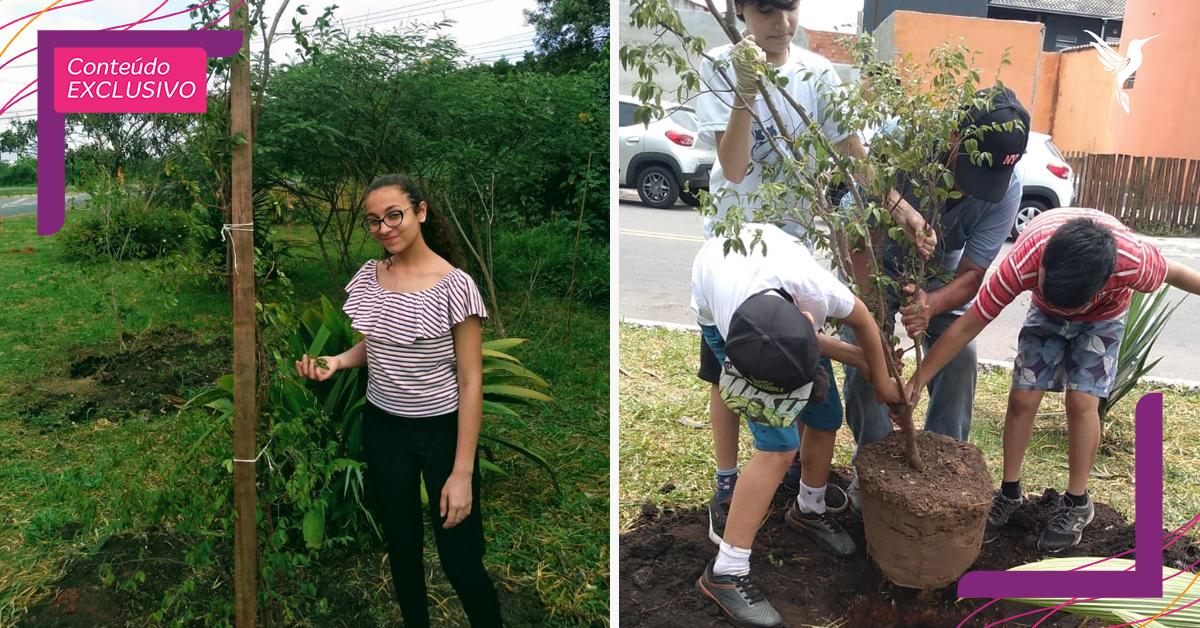 Garota de 13 anos mobiliza comunidade para reflorestar área de mata nativa em SP 10