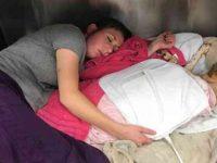 Veterinária dorme com cachorro queimado incêndio