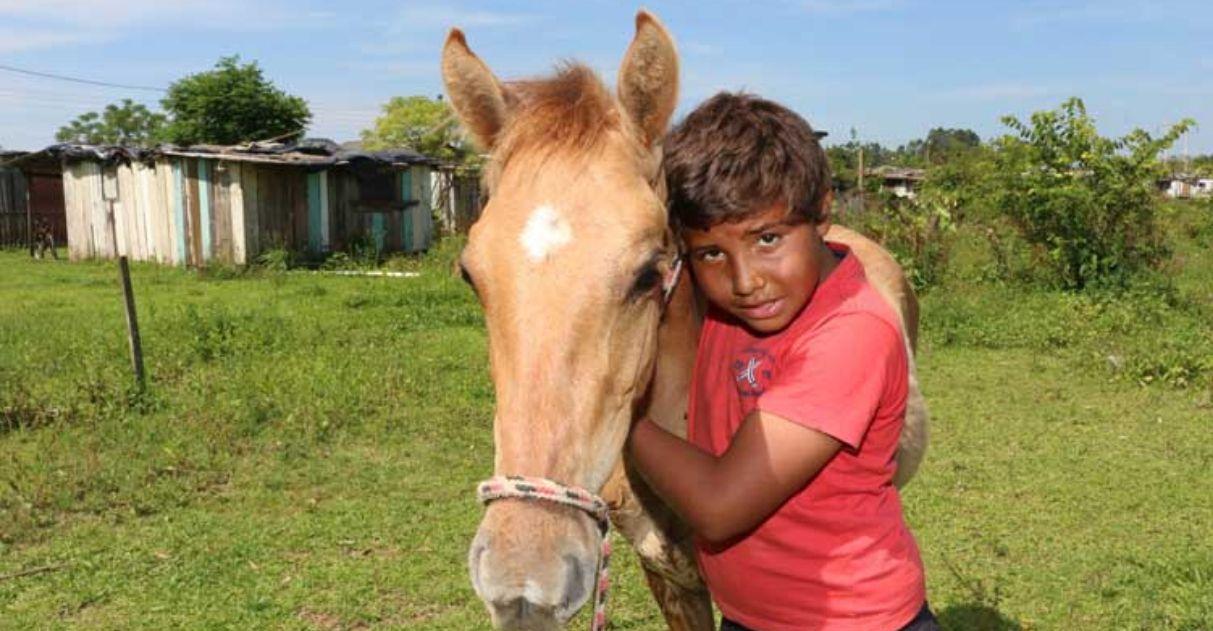 menino pede papai noel milho cavalo natal