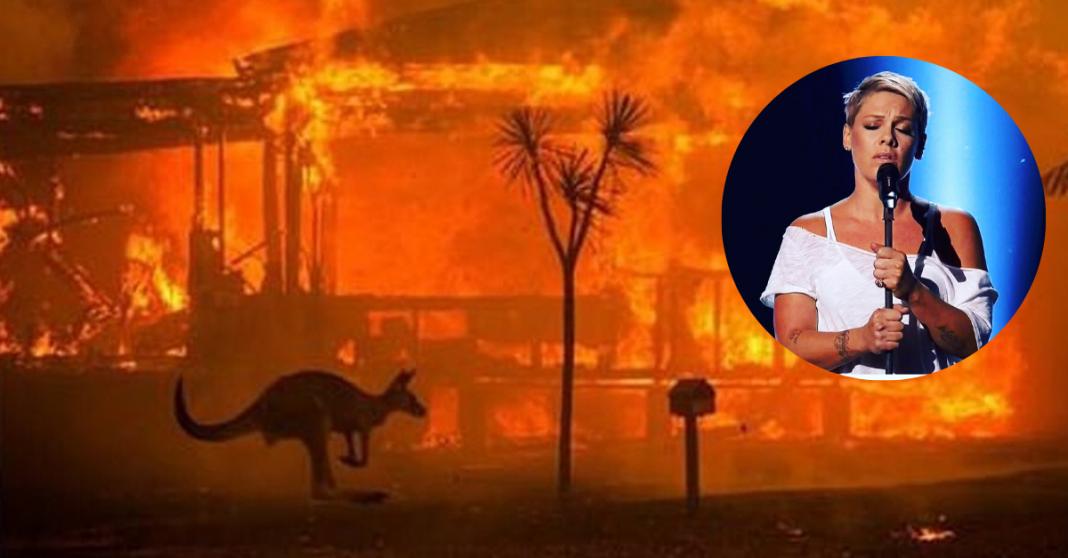 Pink doa R$ 2 milhões para combate de incêndios florestais na Austrália 1