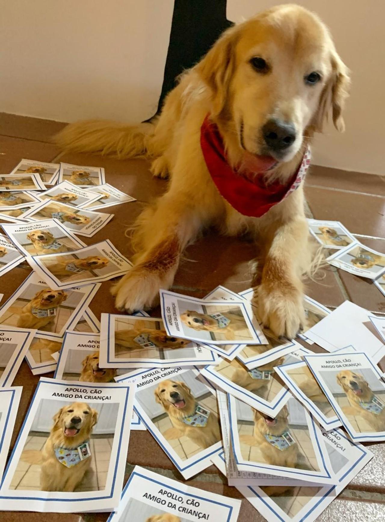 cão terapeuta hospital carta gratidão crianças