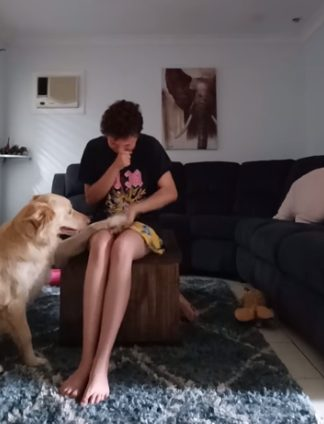 Cão de serviço ajuda jovem autista lidar ataques de pânico