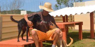 Detentos cuidam de cães abandonados em projeto ressocialização