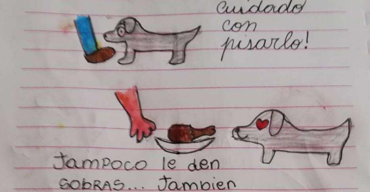 Menina cria manual para tia cuidar de cachorro