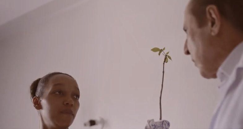 médico que doa uma muda de árvore para cada bebê que traz ao mundo entregando uma muda para mãe