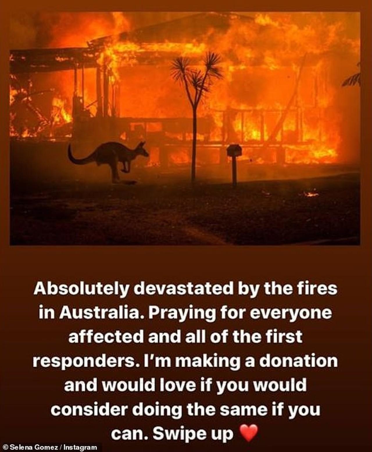 pink doação equipe de resgate incêndios florestais austrália