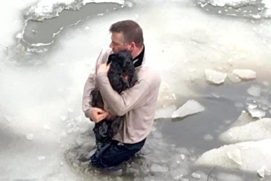 Homem resgata cachorro preso em águas congelantes